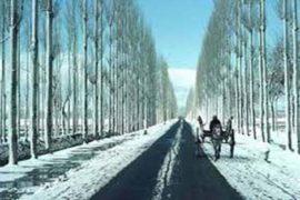 Mesmerising Kashmir Tour (Srinagar – Sonamarg – Gulmarg – Pahalgam – Srinagar)